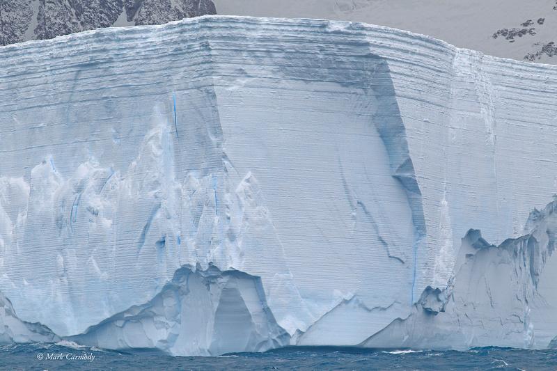 MC001118 Iceberg