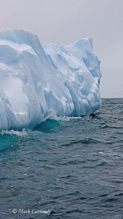 MC__0971 (1) Iceberg Elephant Isle