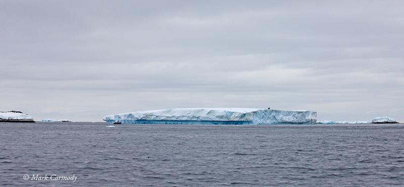MC__1334 Icebergs Dave