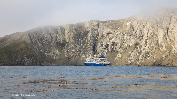 Sea Spirit anchored in Elsehul Bay, South Georgia