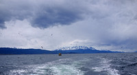King crab boat, Beagle Channel, Ushuaia